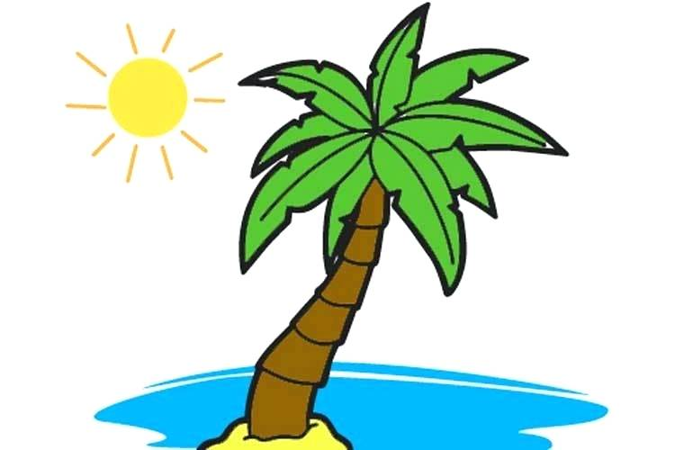 750x500 Easy Way To Draw A Palm Tree An Easy Way Drawing Palm For Kids