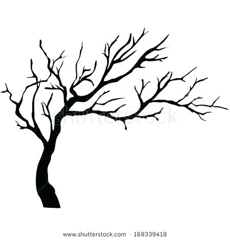 450x470 Simple Tree Drawing Simple Tree Trunk Outline Tree Trunk Printable