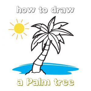 300x300 Drawing Of A Palm Tree