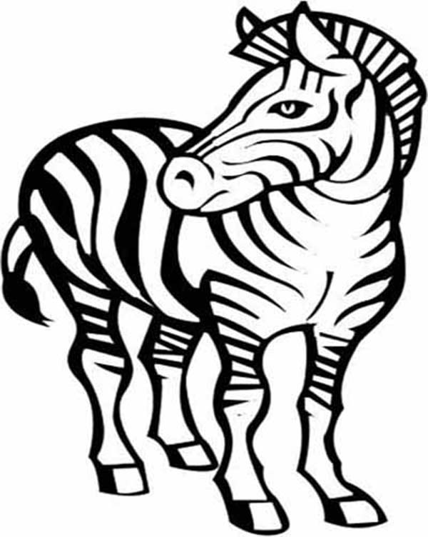 600x752 Awesome Zebra Drawing Coloring