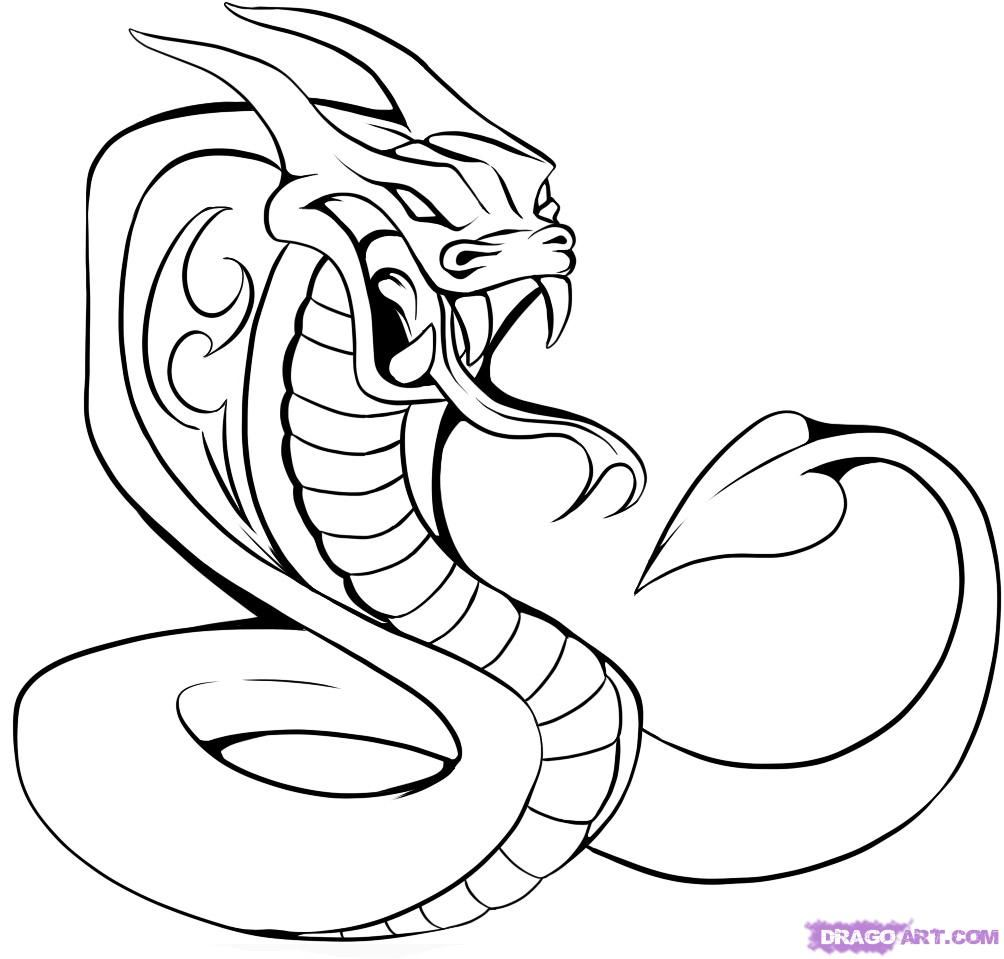 King Cobra Drawing
