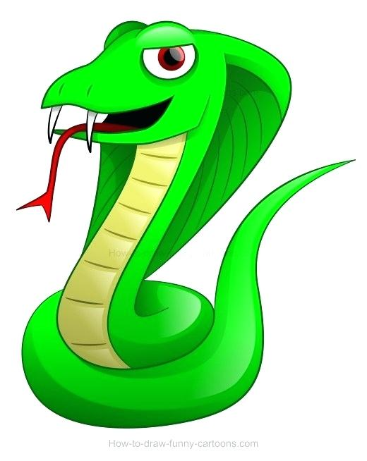 520x654 how to draw a cobra how to draw a king cobra cobra f max draw