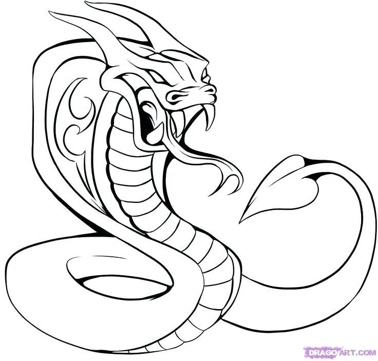 736x703 how to draw a cobra draw king cobra snake cobra f max draw