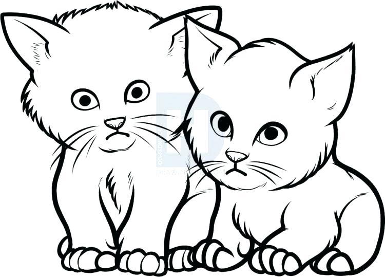 750x539 Cute Kittens Drawings Running