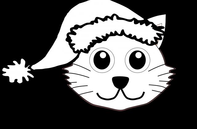 640x420 Kittens Drawing Free Download On Unixtitan