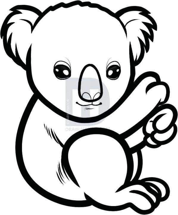 Koala Drawing Cute Free Download Best Koala Drawing Cute On