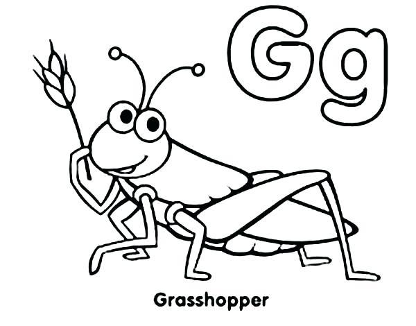 600x470 draw a grasshopper draw grasshopper tutorial