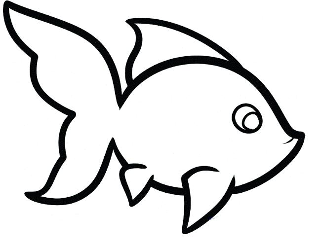 650x501 bass fish outline coloring pages best place to color crafts bass