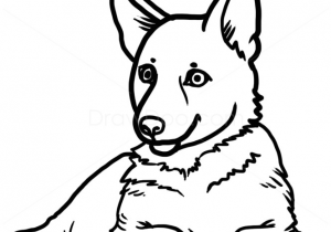 300x210 Drawing Ideas For Dogs Lisa Creative Lab Custom Pet Portrait