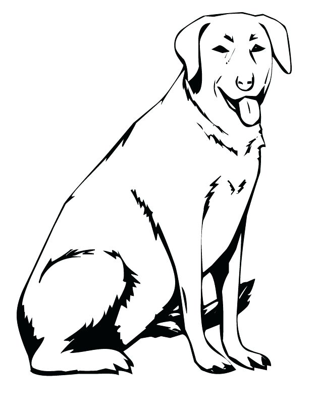 630x810 Yellow Lab Coloring Pages Yellow Lab Coloring Pages Lab Coloring