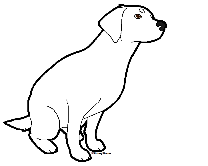 728x579 Yellow Lab Puppy Coloring Pages Coloring Pages, Yellow Lab