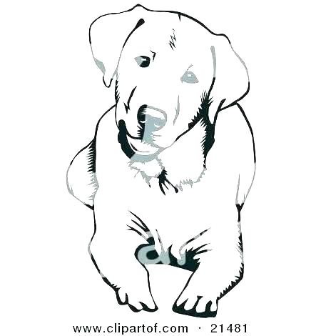 450x470 Yellow Lab Coloring Pages