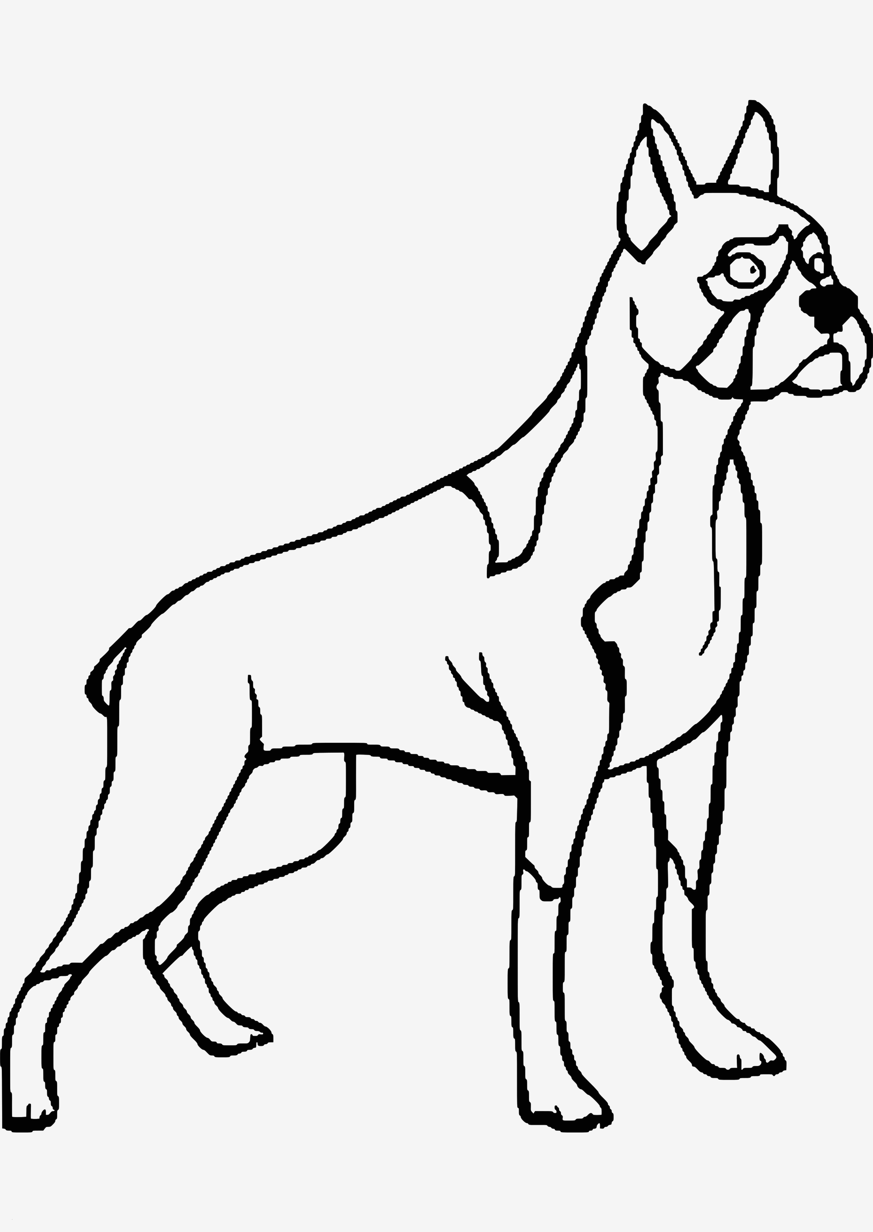labrador drawing  free download on clipartmag