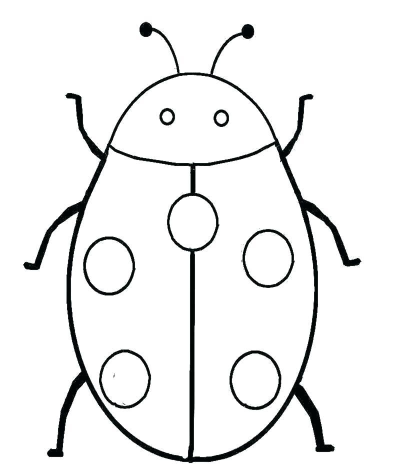 820x940 drawing a ladybug more ladybug drawings ladybug drawing easy