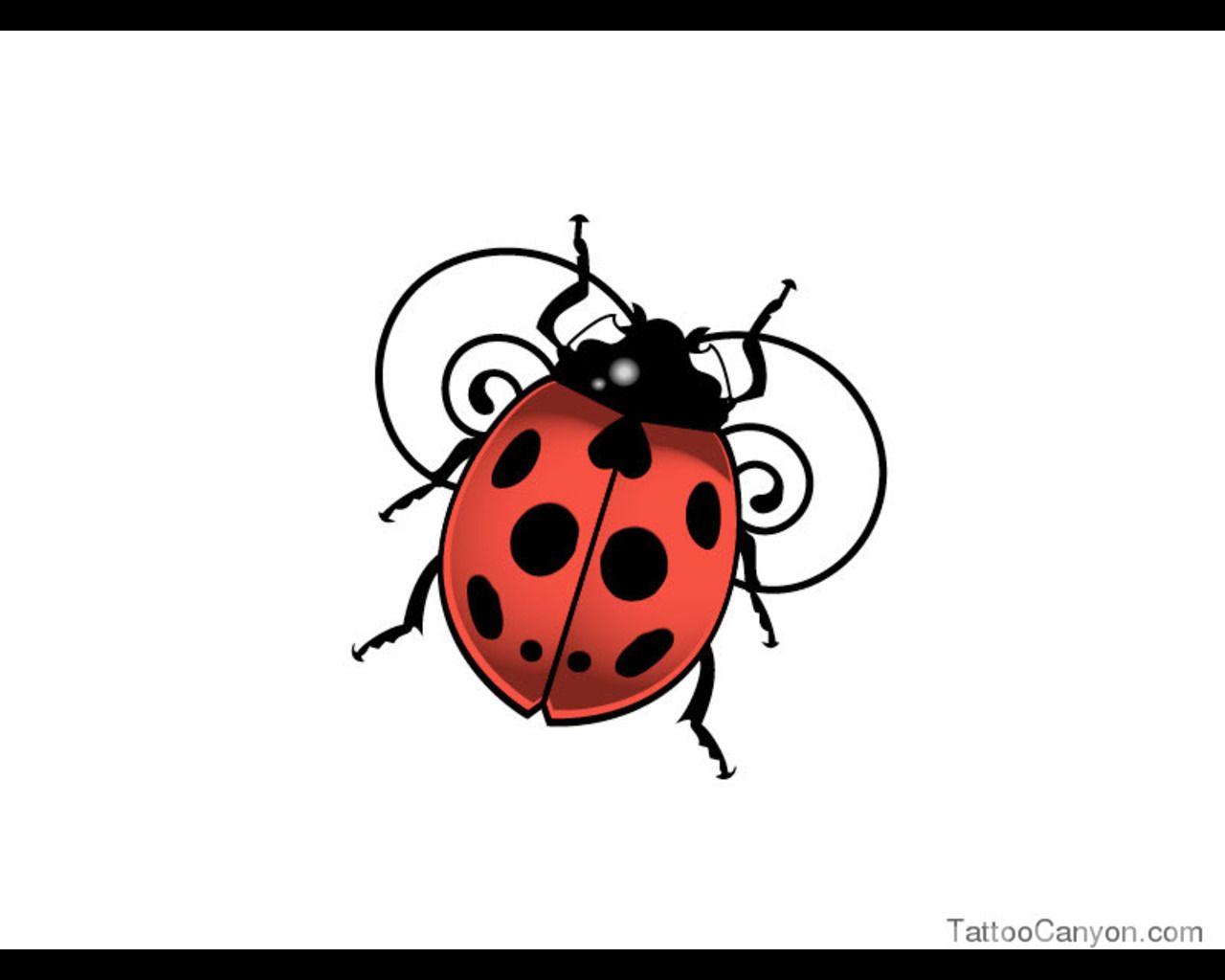 1280x1024 lady bug tatoos lady bug tattoo, bug