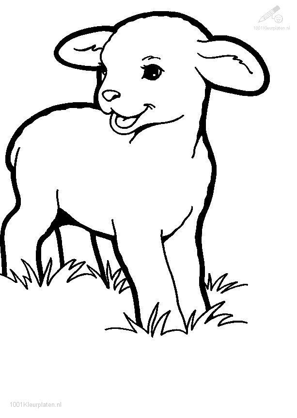 613x863 lamb coloring pages fresh lamb coloring