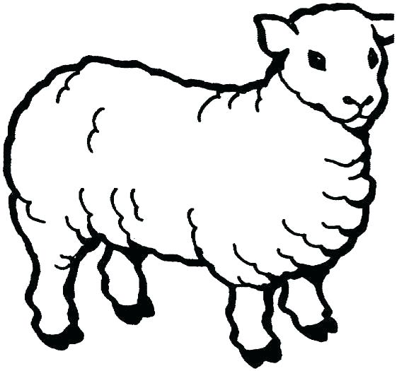 561x525 demo sheep drawing template c program lamb template to print lamb