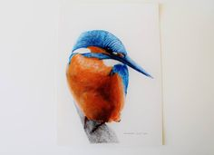 236x171 Best Colored Pencil Images Pencil Drawings, Colouring