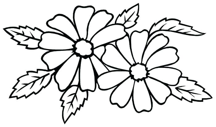 700x410 Big Flower Coloring Pages Hard Flower Coloring Pages Large Flower