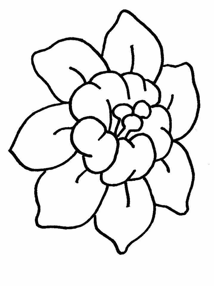 718x957 Coloring Splendid Flower Coloring Pages With Pot Dibujos Para