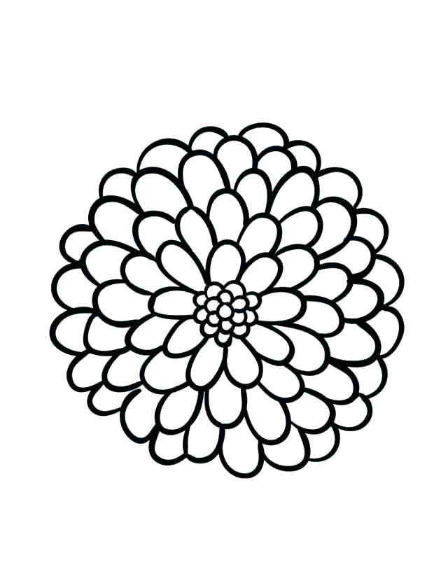 630x840 Dahlia Drawing Large Flower For Free Download