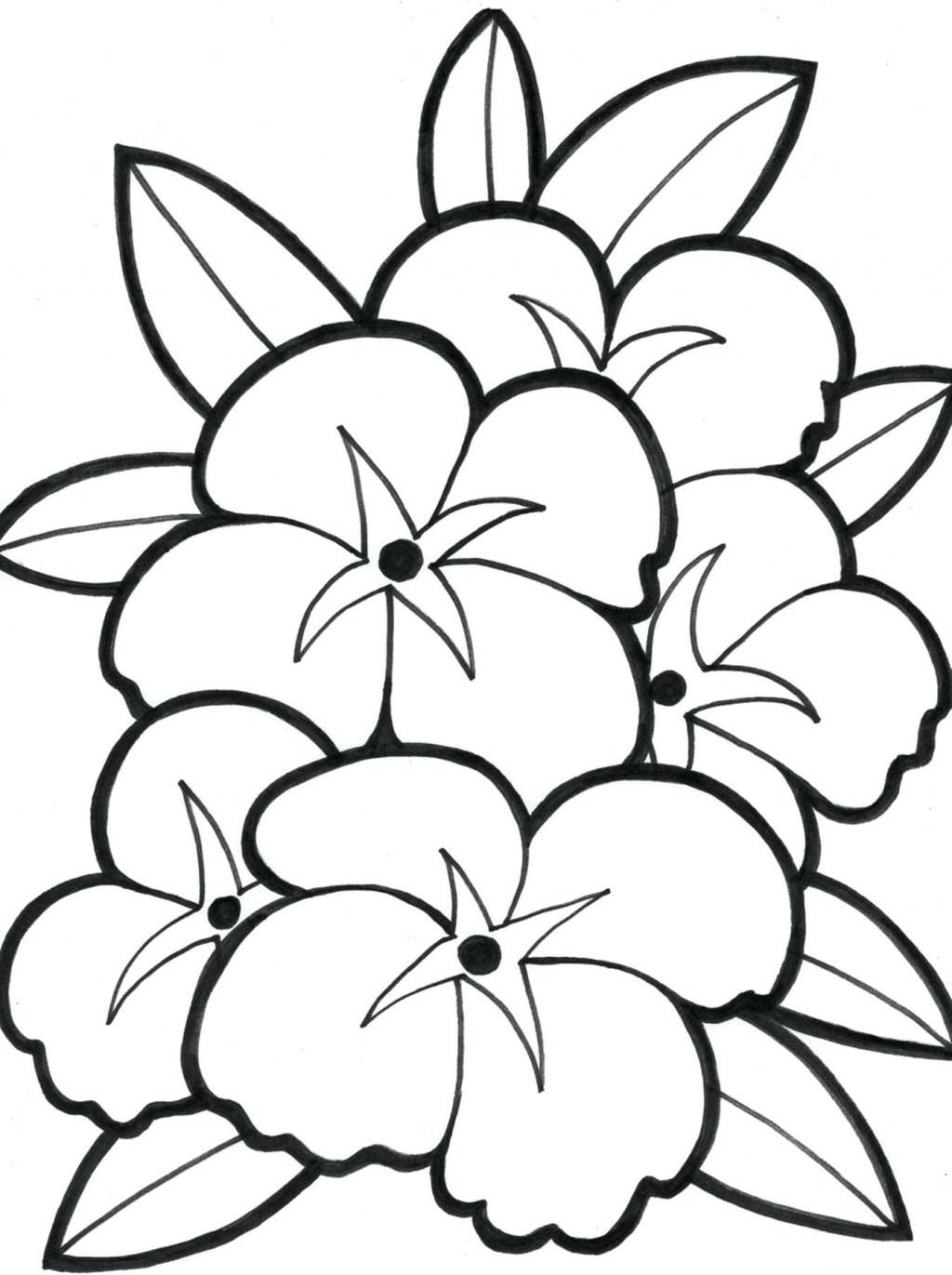 1024x1371 Eflclpl Large Print Flower Coloring Pages Open For Adults Animalsl