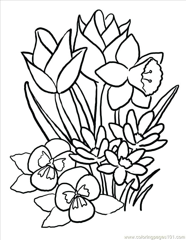 650x835 Mothers Day Flowers Coloring Pages Large Images More Big Flower
