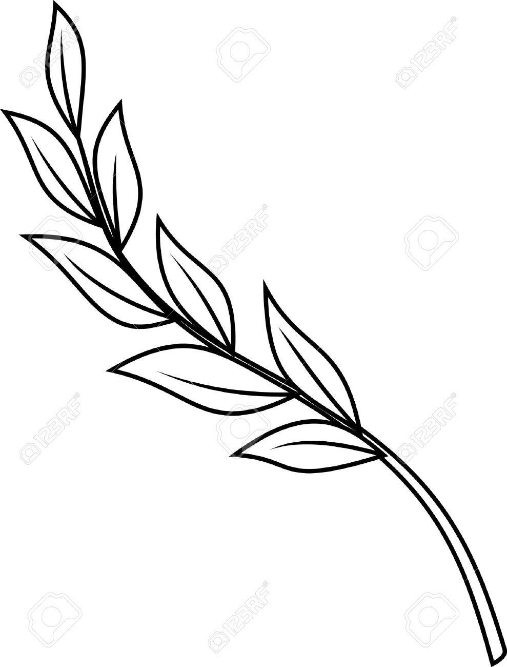 989x1300 laurel branch stock vector illustration and royalty free laurel