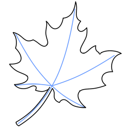260x260 How To Draw The Perimeter Of A Leaf Holidays Drawings, Leaf