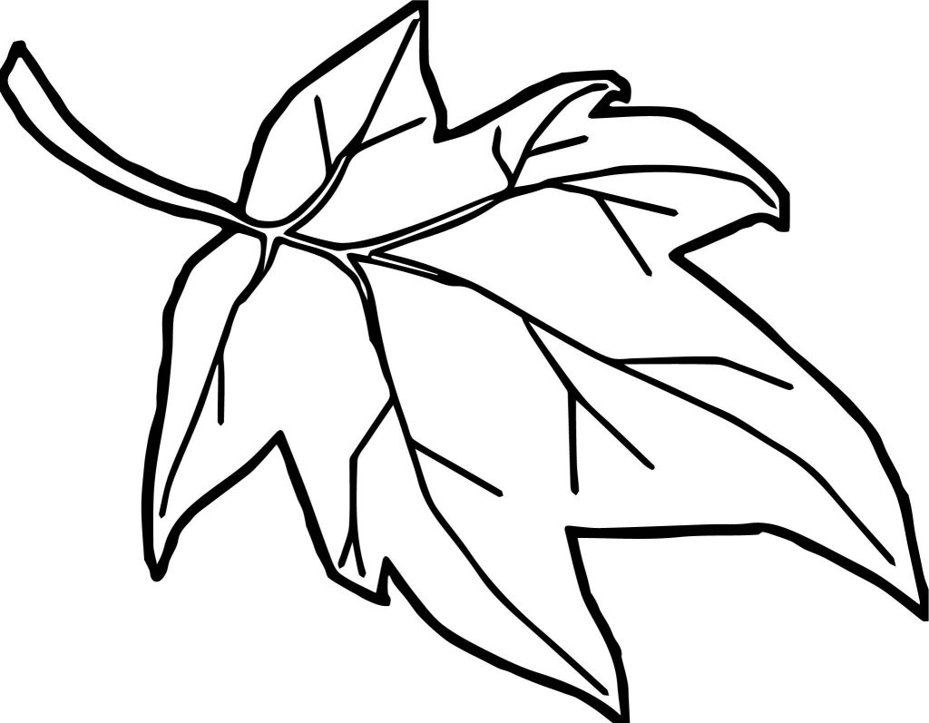 1024x797 Cartoon Leaf Coloring Pages New Leaf Cartoon Drawing