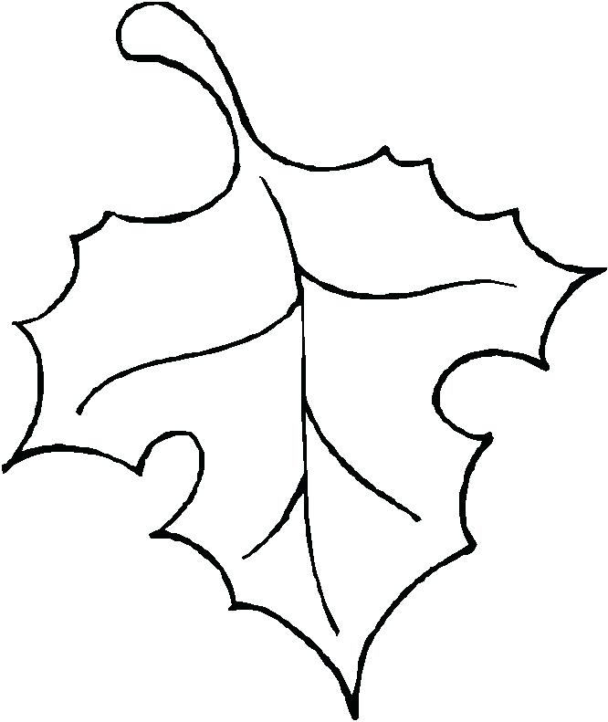 666x791 Draw Fall Leaves Easy Way To Draw Fall Leaves