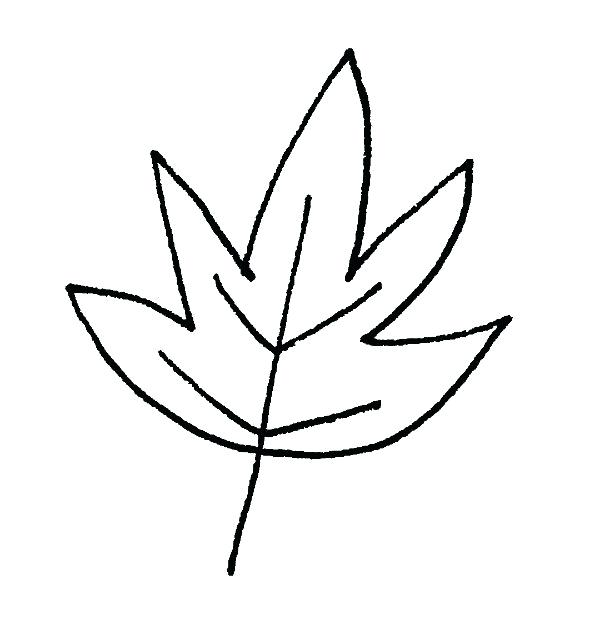600x644 Easy To Draw Leaves Drawing A Leaf How To Draw Simple Leaves Step