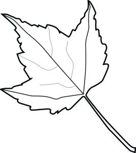 267x300 Fall Leaves Drawing Easy