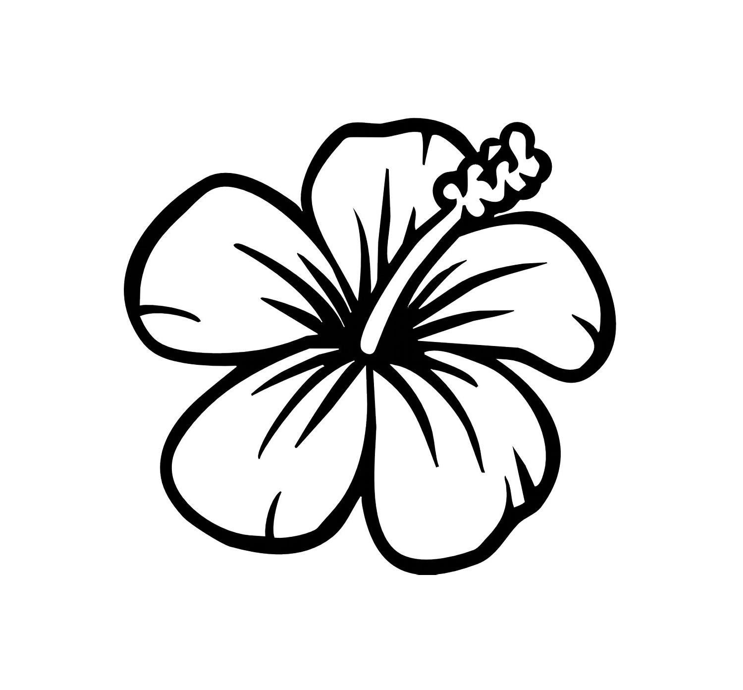 1500x1392 Hawaii Flowers Drawing Easy Leaf Outline Image