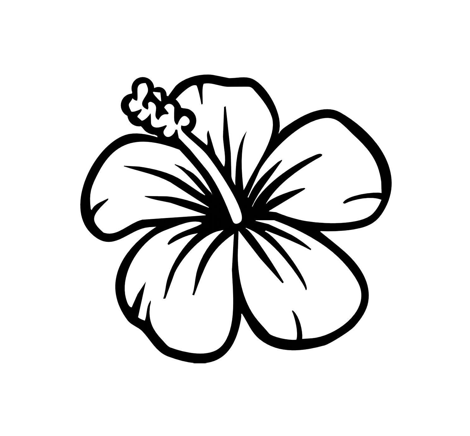 1500x1392 Hawaiian Flower Sketch Hawaiian Flowers Drawing Easy Leaf Outline
