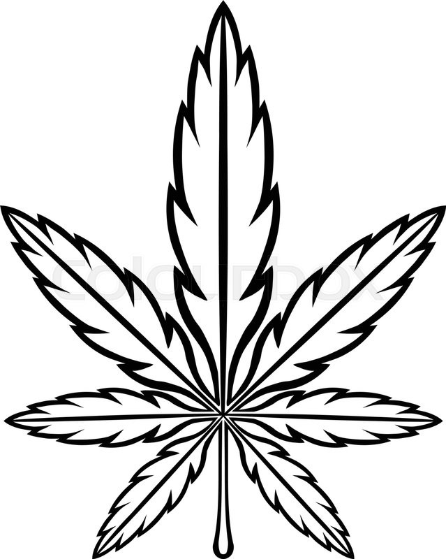 639x800 Like Pot Leaf Drawing