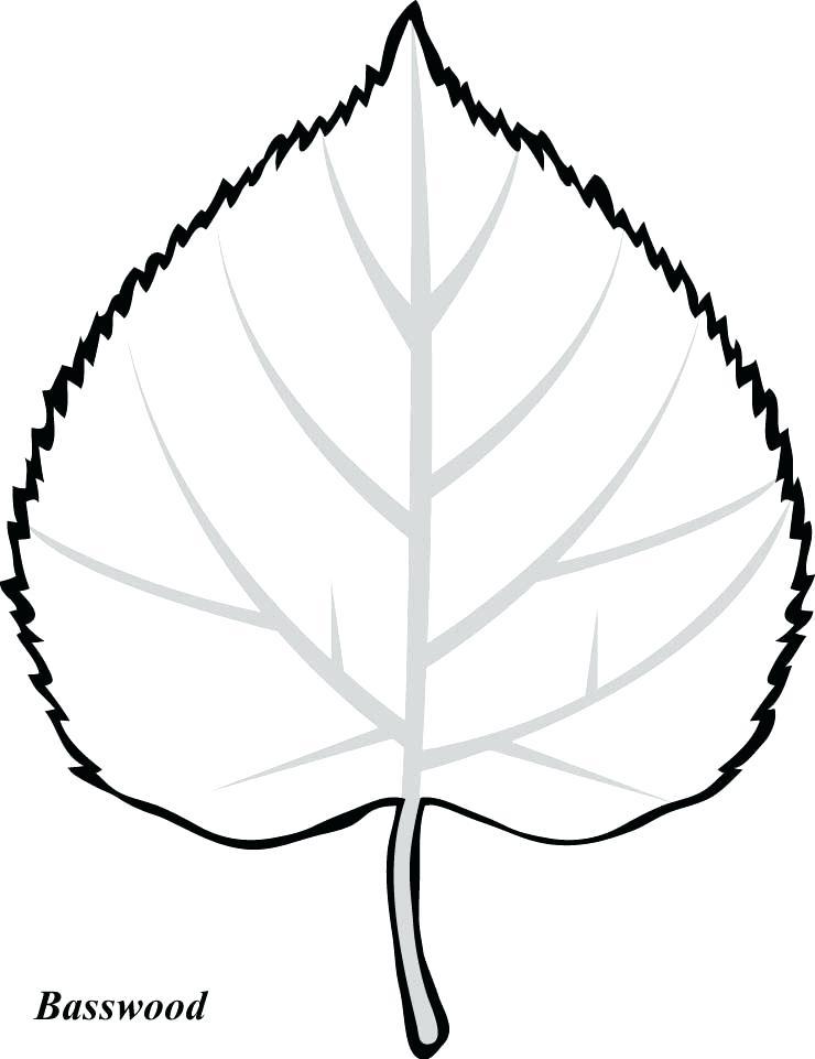 740x961 fall leaf outline surprise fall leaves outline leaf template oak