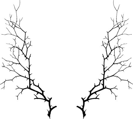 452x402 Spooky Leaves Clipart