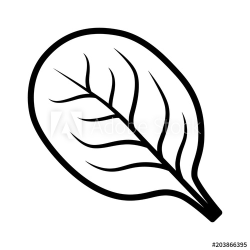 500x500 Spinach Vegetable Leaf Line Art Vector Icon For Food Apps