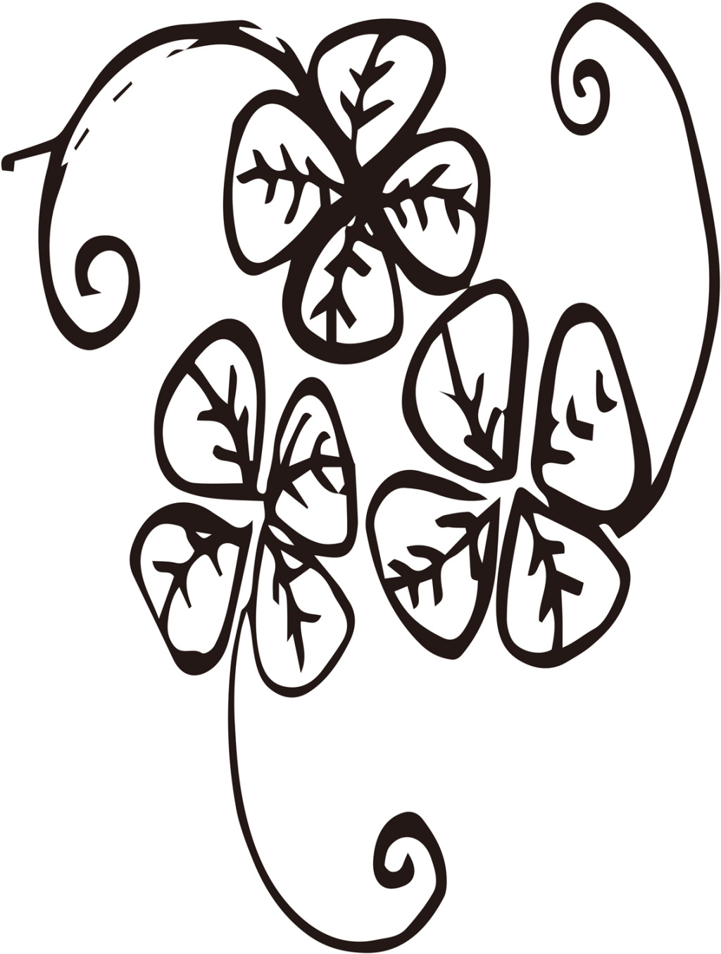 1024x1354 Leaf Clover Drawing Four Step