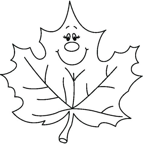 474x476 drawing fall leaves fall leaves drawing autumn leaves digital