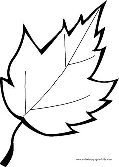Leaf Outline Drawing