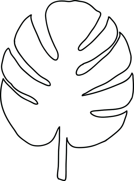 557x753 Palm Leaf Outline Outline Of A Bread With Palm Leaf Vector