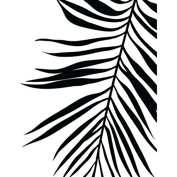 600x600 How To Draw Palm Leaves How To Draw A Palm Leaf Step