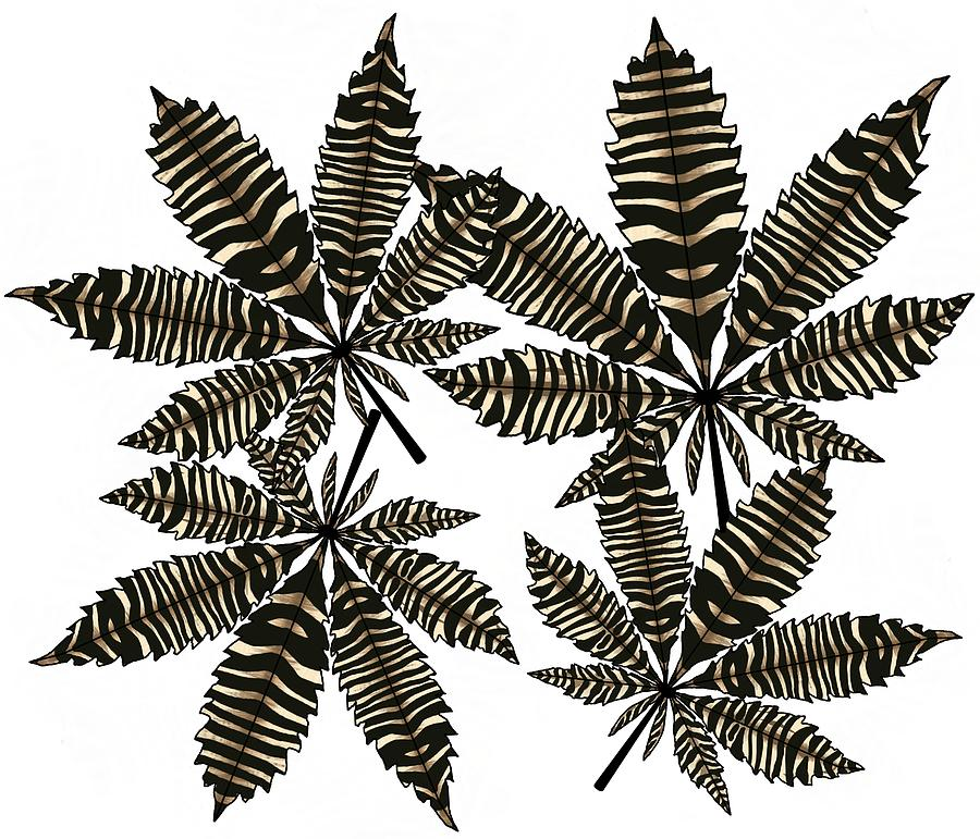 900x771 Zebra Pattern Marijuana Leaf Drawing