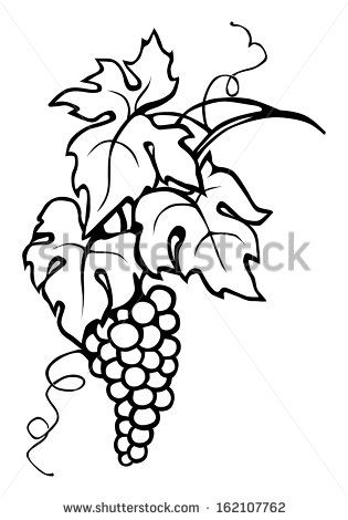 315x470 Grape, Vine Leaves Cofee Grape Vines, Leaf Drawing, Wine Art
