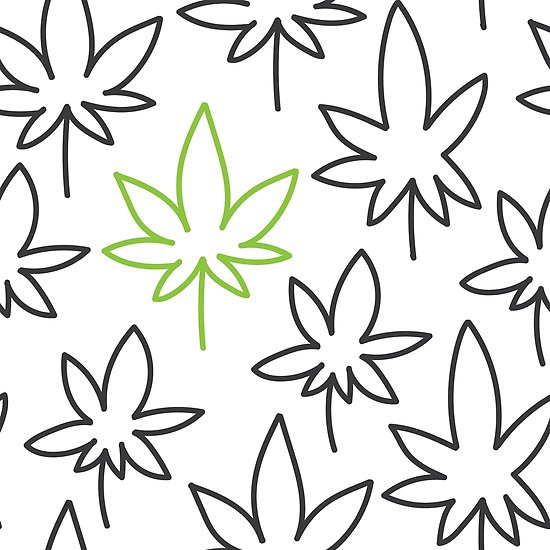 550x550 Cannabis Leaf Seamless Pattern Doodle Drawing Vector Posters