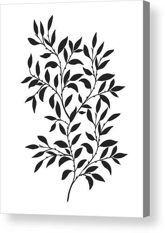 530x750 Hand Drawn Leaves Vine Acrylic Print