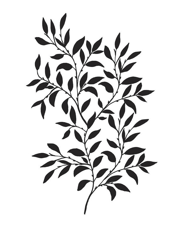 599x776 Hand Drawn Leaves Vine Art Print