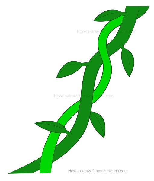 510x600 How To Draw Vines
